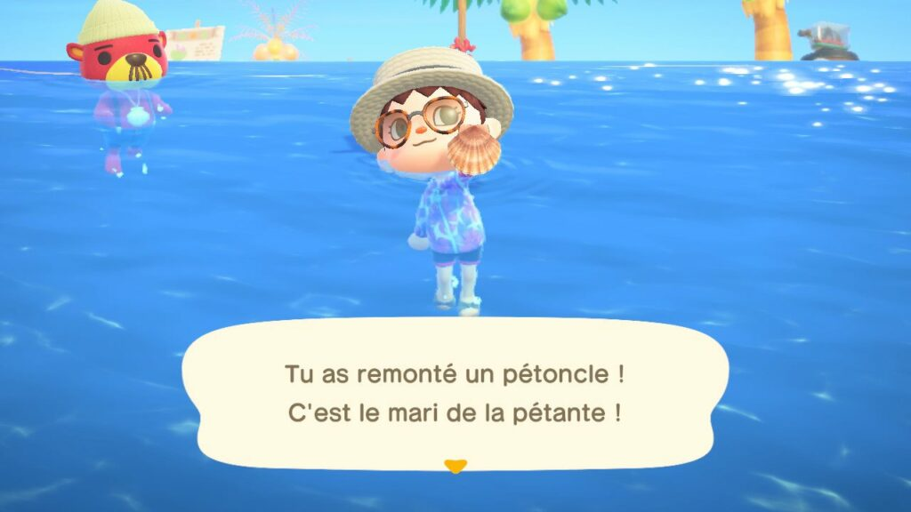 Mise à jour Animal Crossing New Horizons (Pascal)